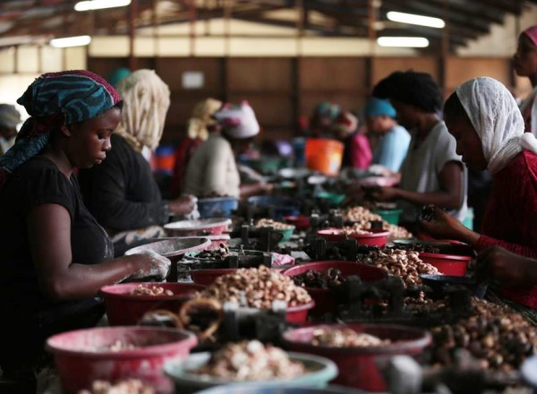 Cashew nut processing in Tanzania.  Photo: ONE